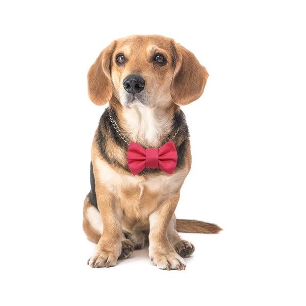 Růžový charitativní psí motýlek Funky Dog Bow Ties, vel. M