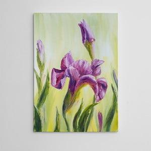 Obraz na plátně Fialový narcis, 50x70 cm