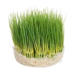 Dekorace Grass, 12x12x12 cm