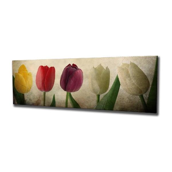 Tulip vászon fali kép, 80 x 30 cm