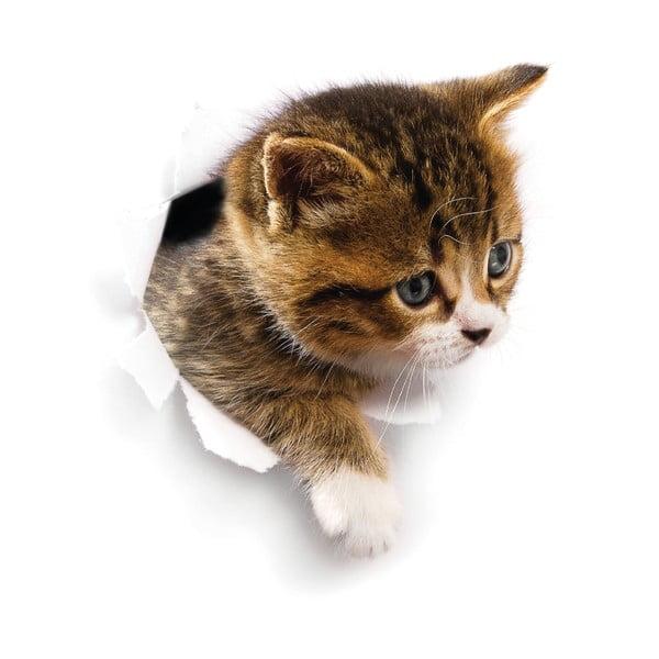 Nástěnná samolepka Ambiance Hiding Cat