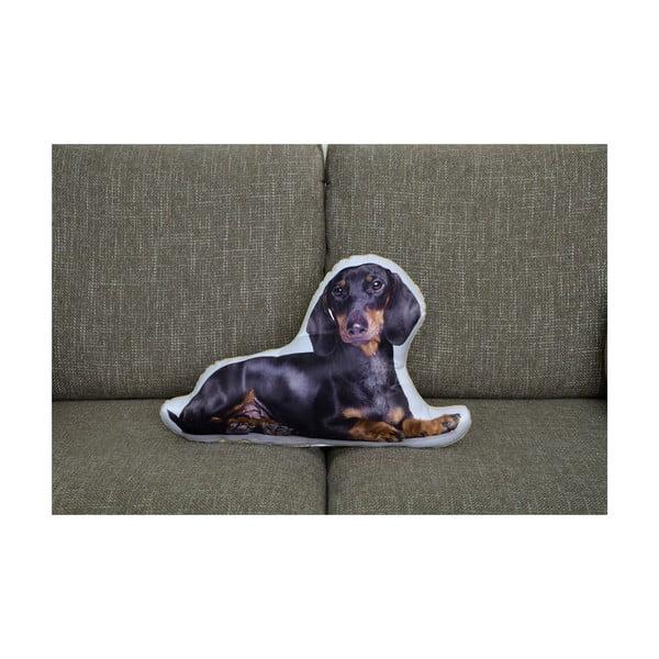 Polštářek Adorable Cushions Jezevčík