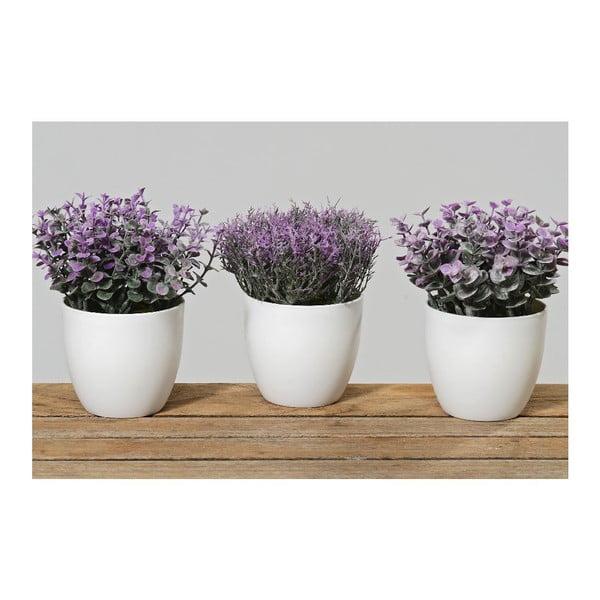 Sada 3 květináčů Potsie