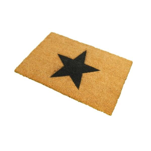 Rohožka Artsy Doormats Star,40x60cm
