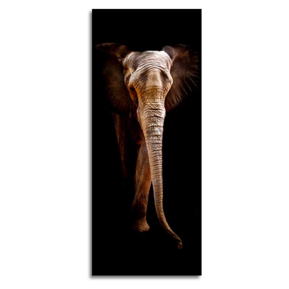 Produktové foto Obraz Styler Elephant, 125 x 50 cm