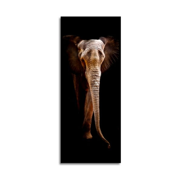 Tablou din sticlă Styler Elephant, 125 x 50 cm