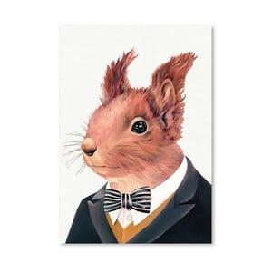 Plakát Squirrel, 30x42 cm