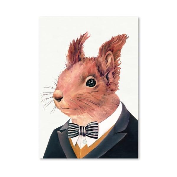 Plakát Squirrel, 42x60 cm