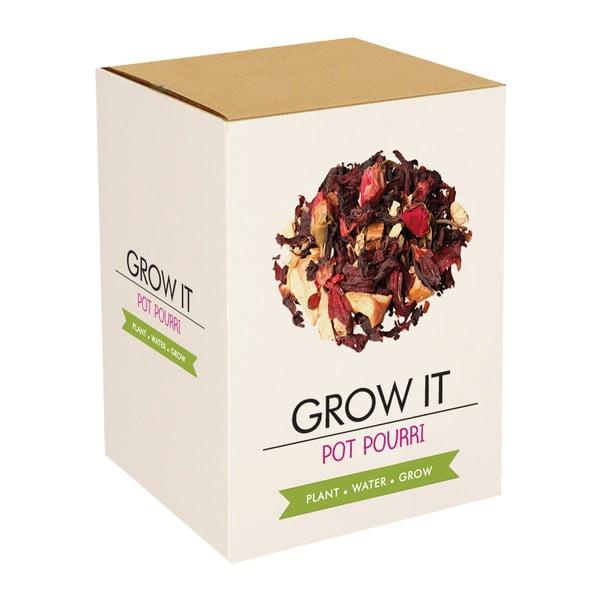 Zestaw do uprawy roślin Gift Republic Potpourri