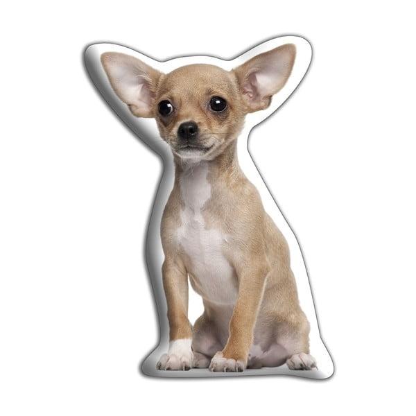 Polštářek Adorable Cushions Ušatá čivava