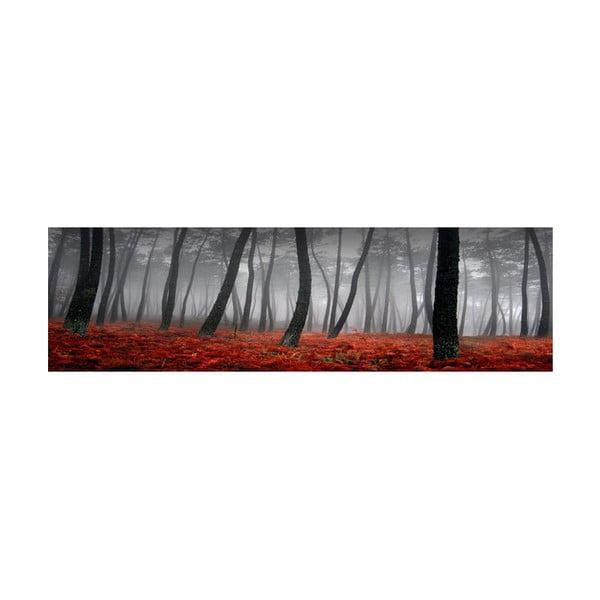 Obraz na skle Les, 40x120 cm