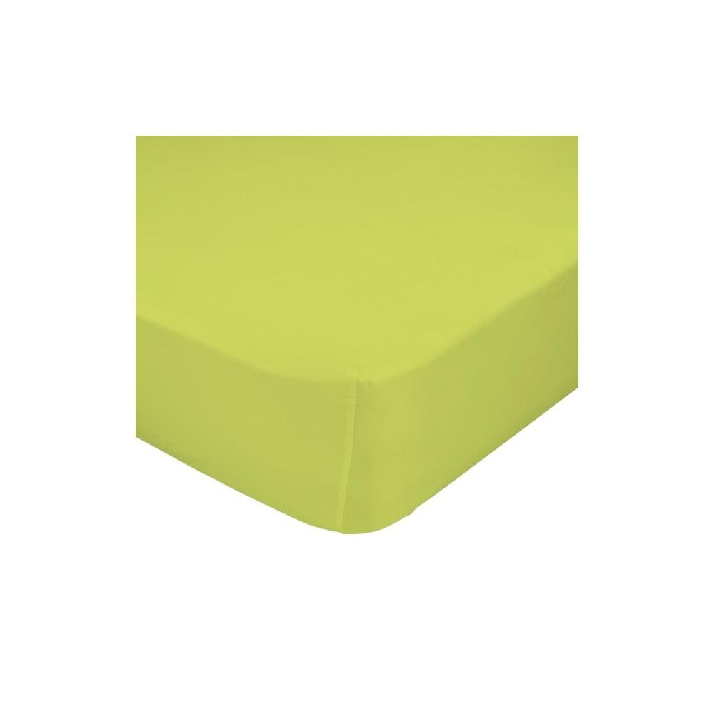 Zelené elastické prostěradlo HF Living Basic, 180 x 200 cm