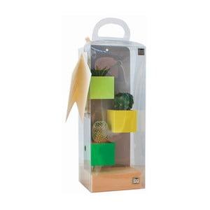 Sada 3ks malých magnetických květináčů s podstavcem a rostlinami, zelená