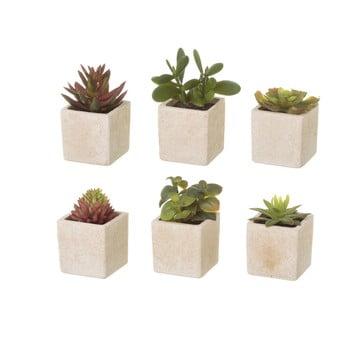 Set 6 flori artificiale Unimasa Cactus imagine