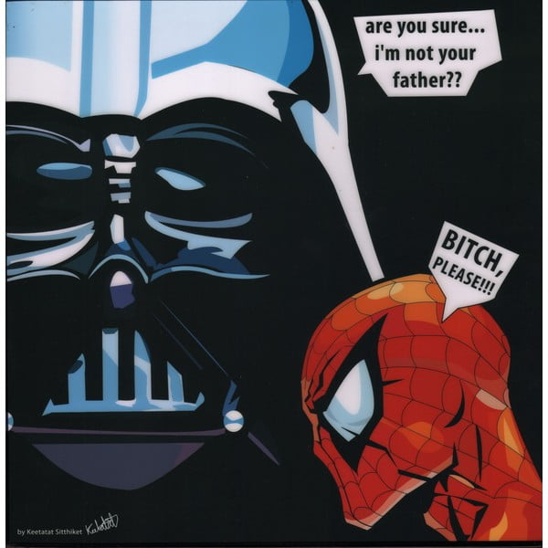 Obraz Darth vader - are you sure I am not your father