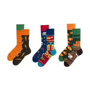 Set ponožek v dárkovém balení Many Mornings Harvest, vel.39–42