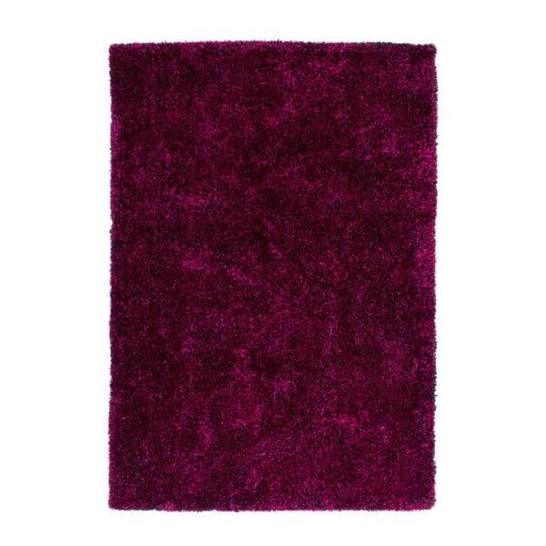 Koberec Resort 678 Violet/Black, 170x120 cm