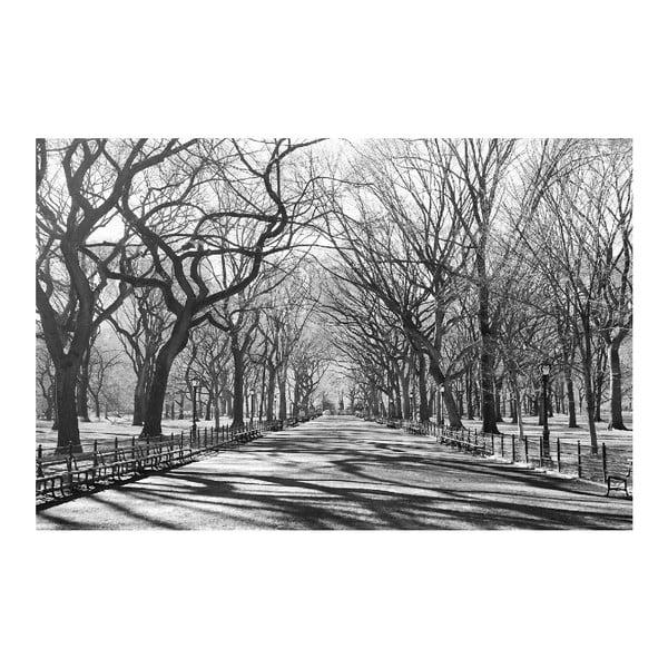 Maxi plakát Poets Walk NY, 175x115 cm