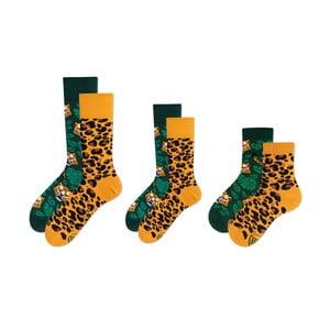 Rodinná sada 3 párů ponožek v dárkovém balení Many Mornings El Leopardo Grand