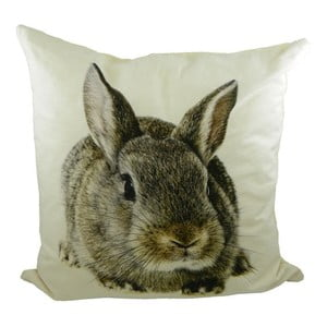 Polštář Mars&More Brown Rabbit, 50x50 cm