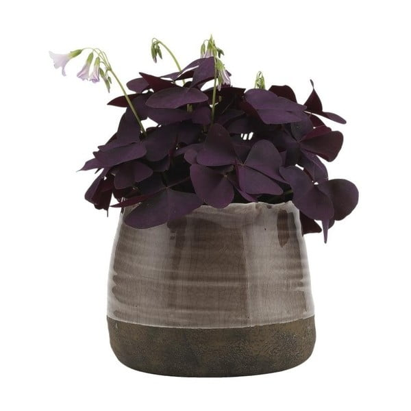 Kameninový květináč A Simple Mess Eik Iron, ⌀14cm