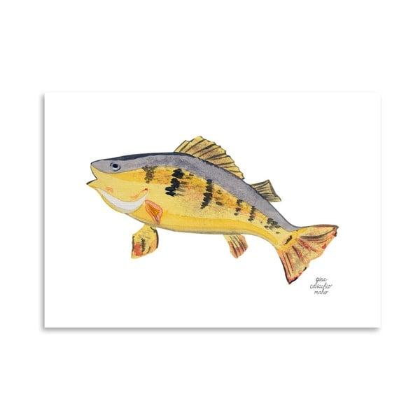 Autorský plakát Fish, 30x42 cm