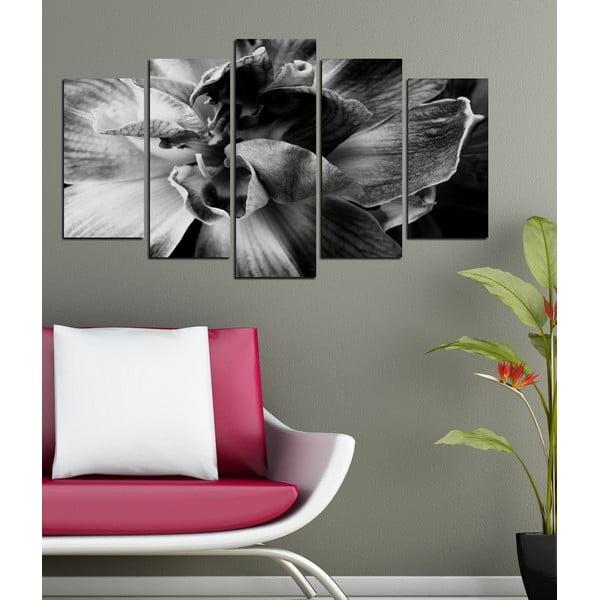 5dílný obraz V objetí orchideje