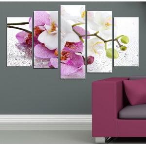 5dílný obraz Orchidejová