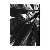 Plakát Imagioo Black Banana Leaves, 40x30cm