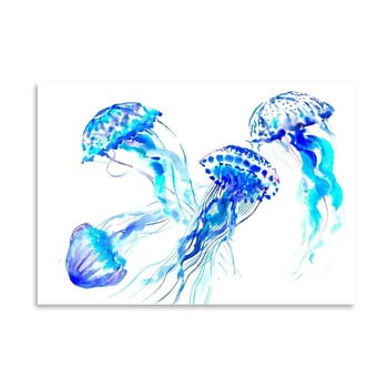 Poster Jellyfish