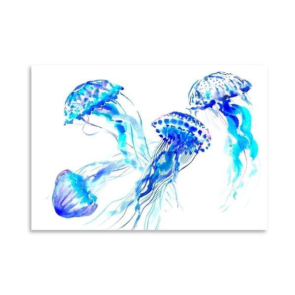 Plakát Jellyfish