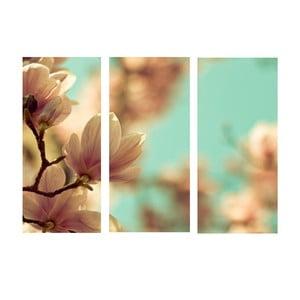 3dílný obraz Jarní pučení