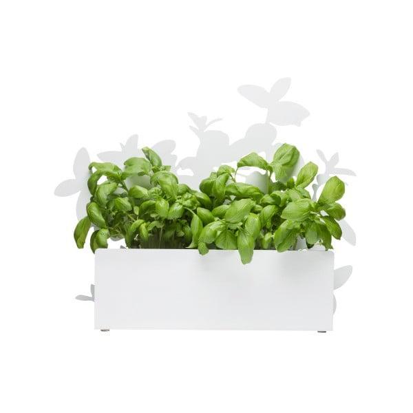 Suport pentru plante aromatice Sagaform Herb, alb