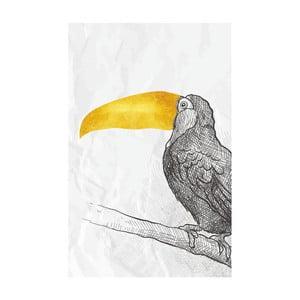 Obraz Canvas Framework Bird, 45 x 70 cm