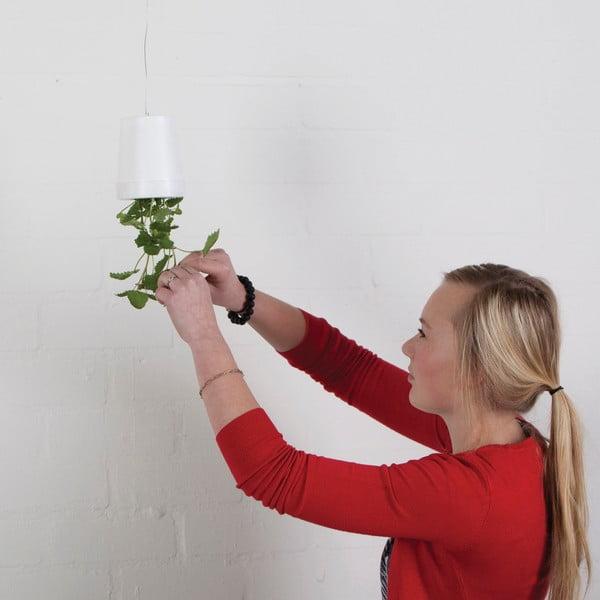 Sada 2 květináčů vzhůru nohama Esschert Design Surprise, výška 11cm