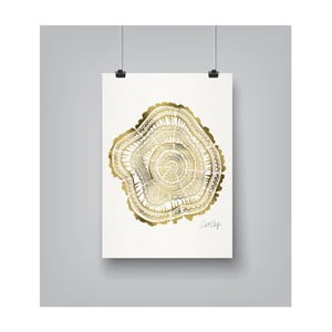 Poster Americanflat Tree Rings, 30 x 42 cm