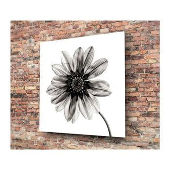 Tablou din sticlă Insigne Flower, 30 x 30 cm, negru – alb de la Insigne
