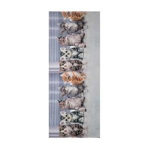 Covor foarte rezistent Webtappeti Gatti, 58 x 80 cm