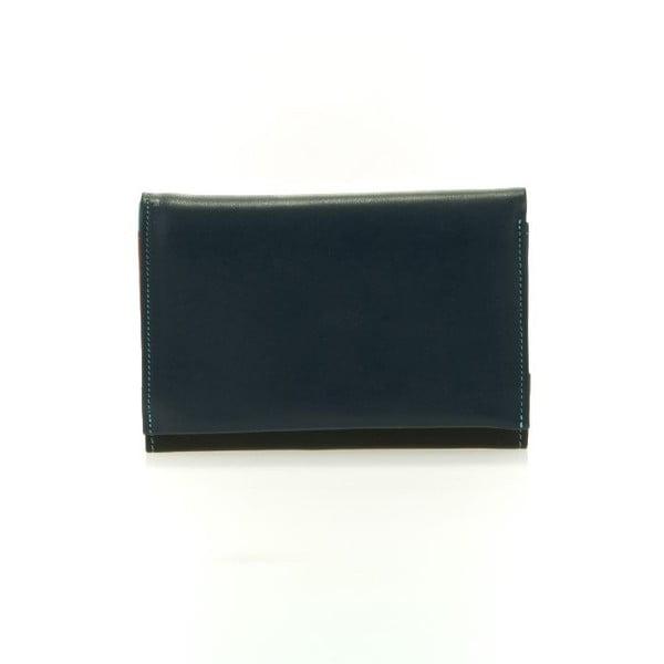 Peněženka a pouzdro na kreditní karty Colorful