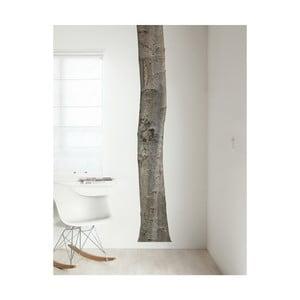 Samolepka Strom, 260 cm