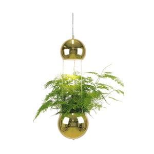 Závěsné svítidlo v barvě mosazi GlobenLighting Mini Planter