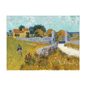 Reproducere tablou Vincent van Gogh - Farmhouse in Provence, 40 x 30 cm