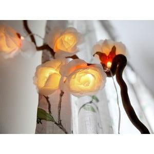 Osvětlení Big Roses