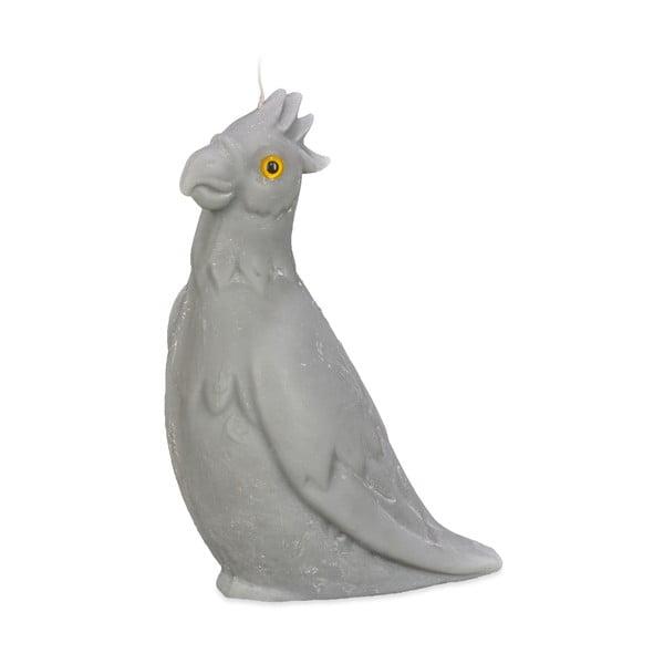 Svíčka Papoušek, šedá