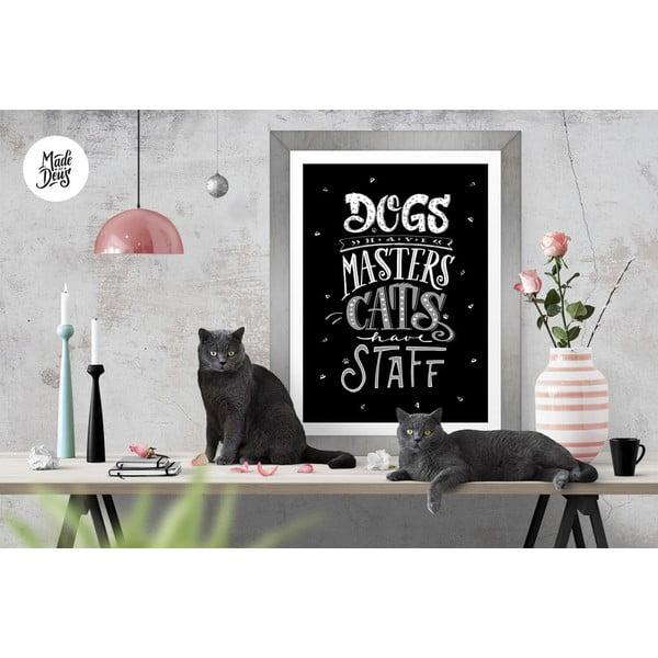 Plakát Dogs Masters Cats Staff BW, A2