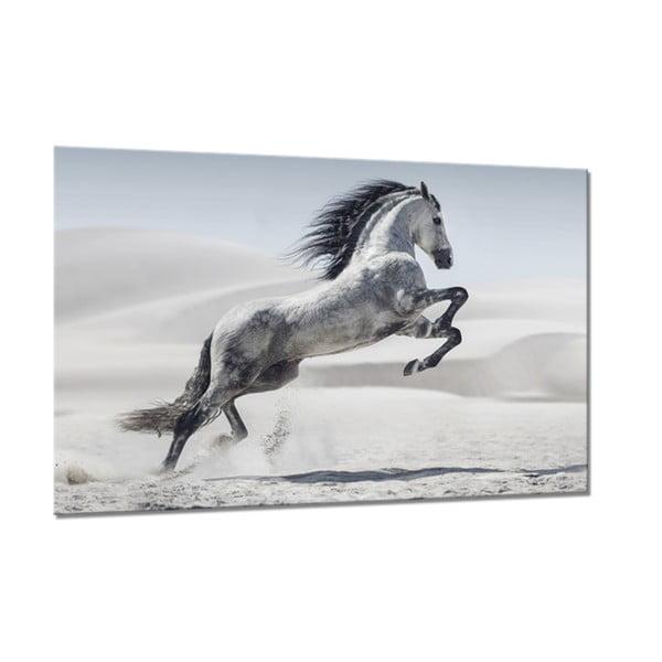 Tablou Styler Glasspik Animals Horse, 80 x 120 cm