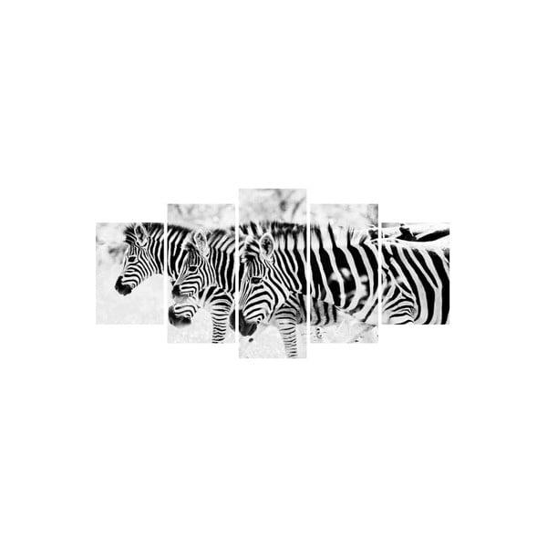 Vícedílný obraz Black&White no. 73, 100x50 cm