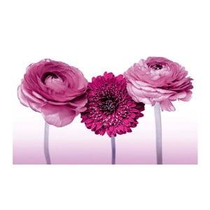 Fotoobraz Trinity Flowers