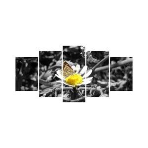 Vícedílný obraz Black&White no. 62, 100x50 cm