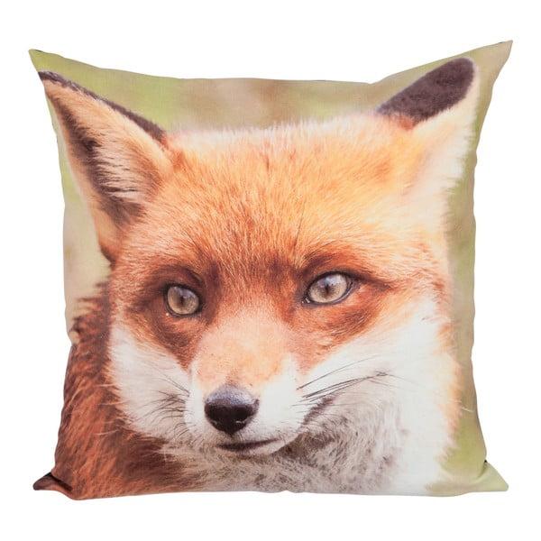 Polštář Brown Fox, 45x45 cm